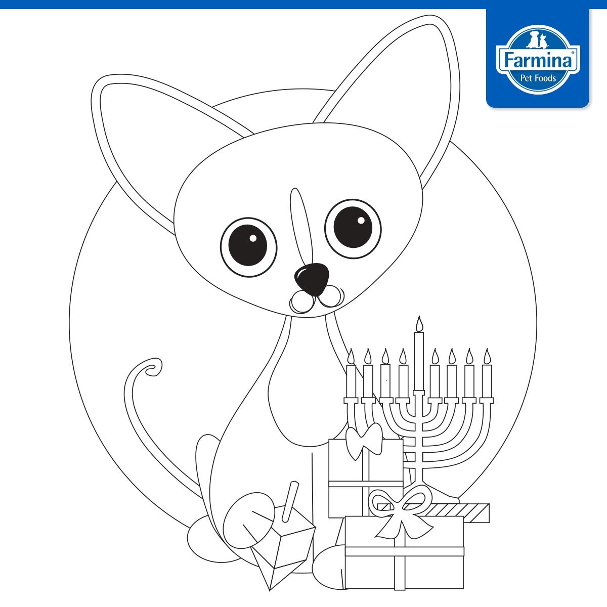דף צביעה חתול וחנוכיה