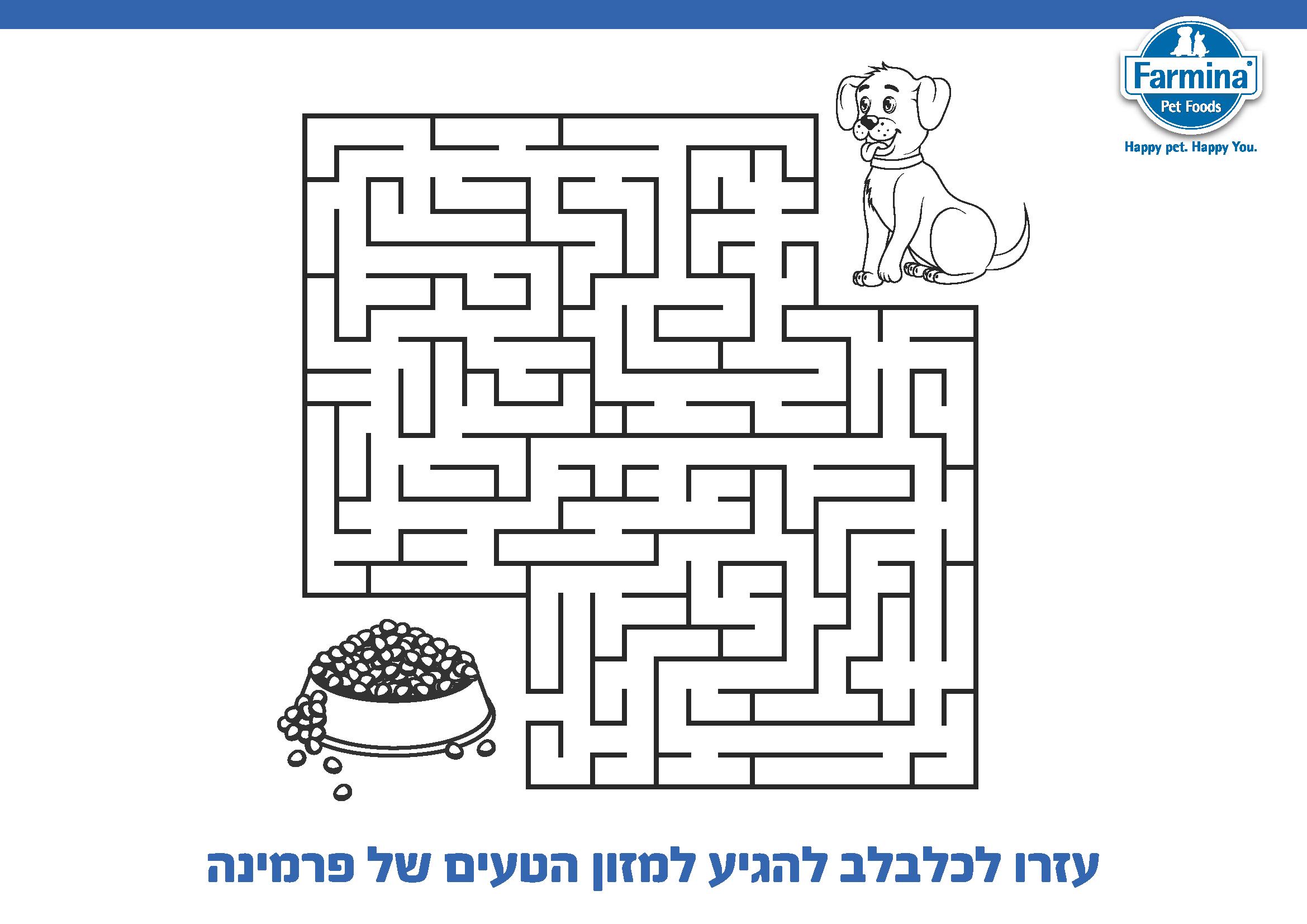 דף צביעה כלב וחתול לחנוכה